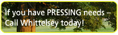 If you have pressing needs call Whittelsey